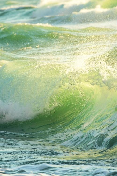 Rough colored ocean wave breaking down, sunrise shot