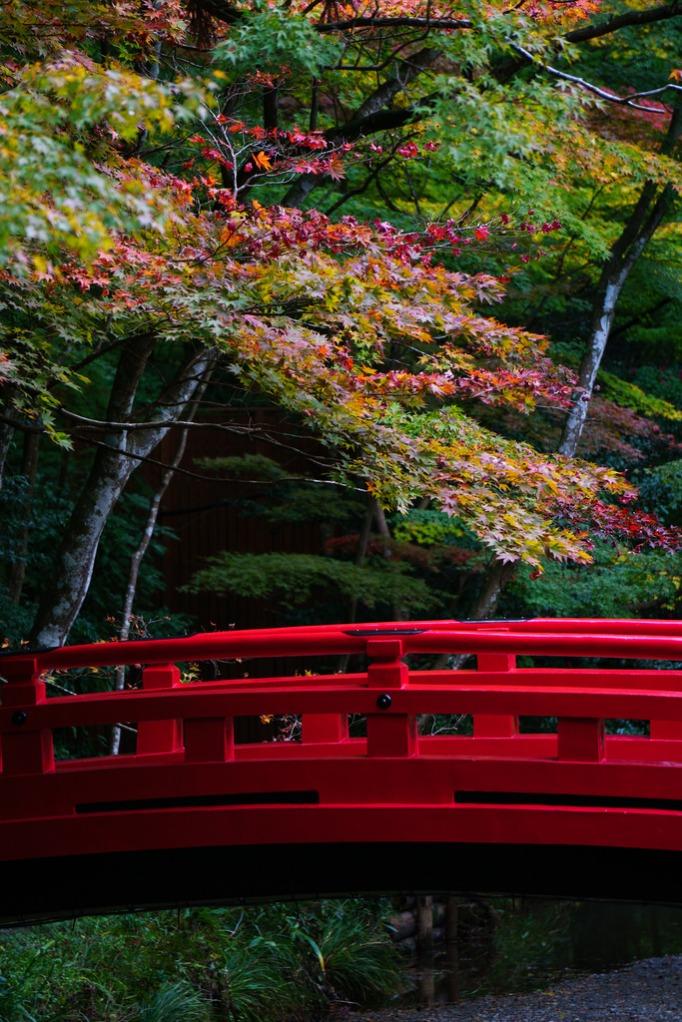 ogunijinja shrine_peaceful-jp-scenery